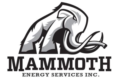 Oilfield Services - Company Listings :: The Petroleum
